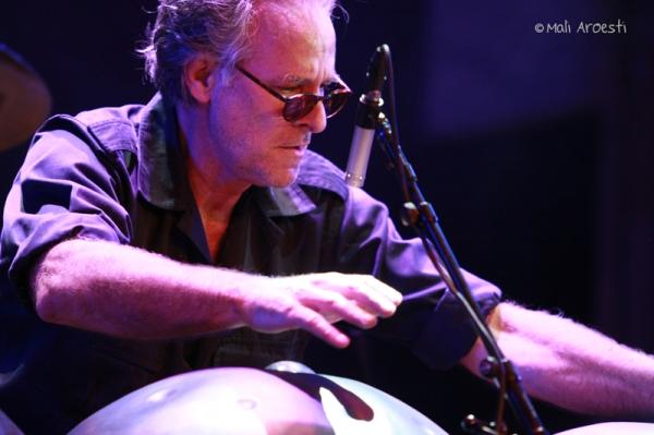סטיב שיהן בפסטיבל ג'אז חורף 2014 (צילום: מלי ארואסטי)