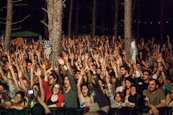 יערות מנשה 2013 (צילום: גיא פריבס)